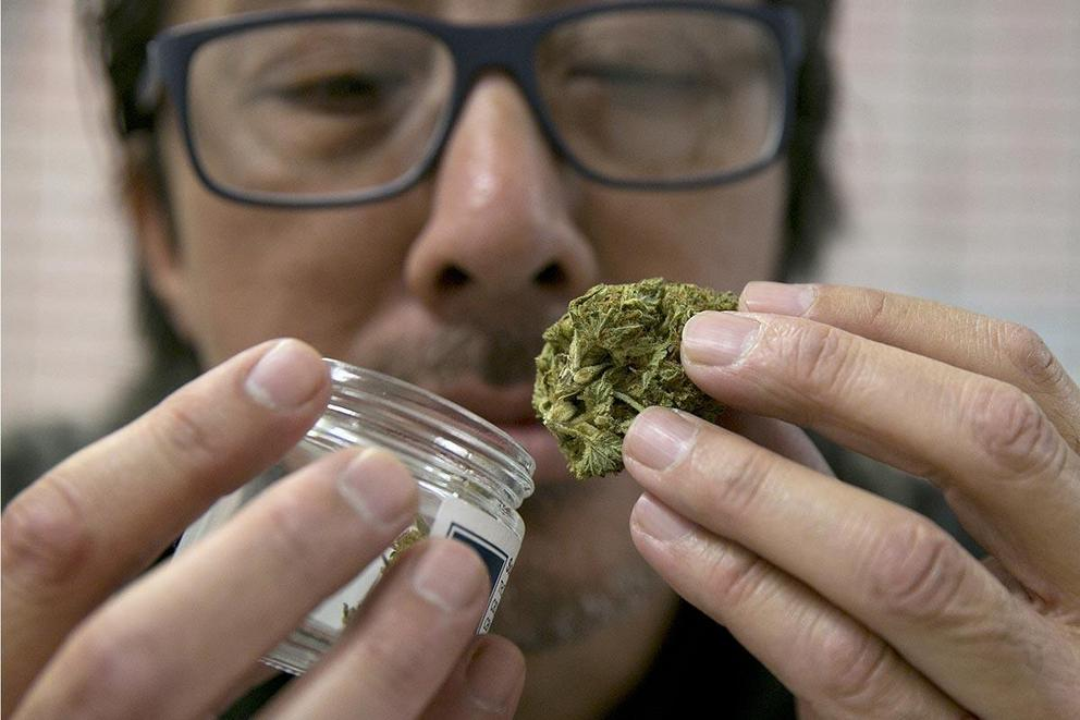 Should the U.S. legalize marijuana?