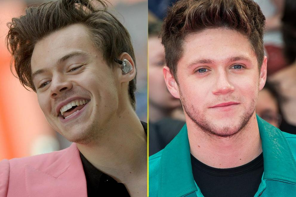 Breakout artist of the year: Harry Styles or Niall Horan?