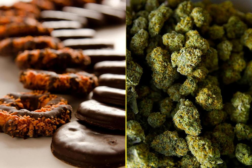 Should Girl Scouts be permitted to sell cookies outside of weed dispensaries?