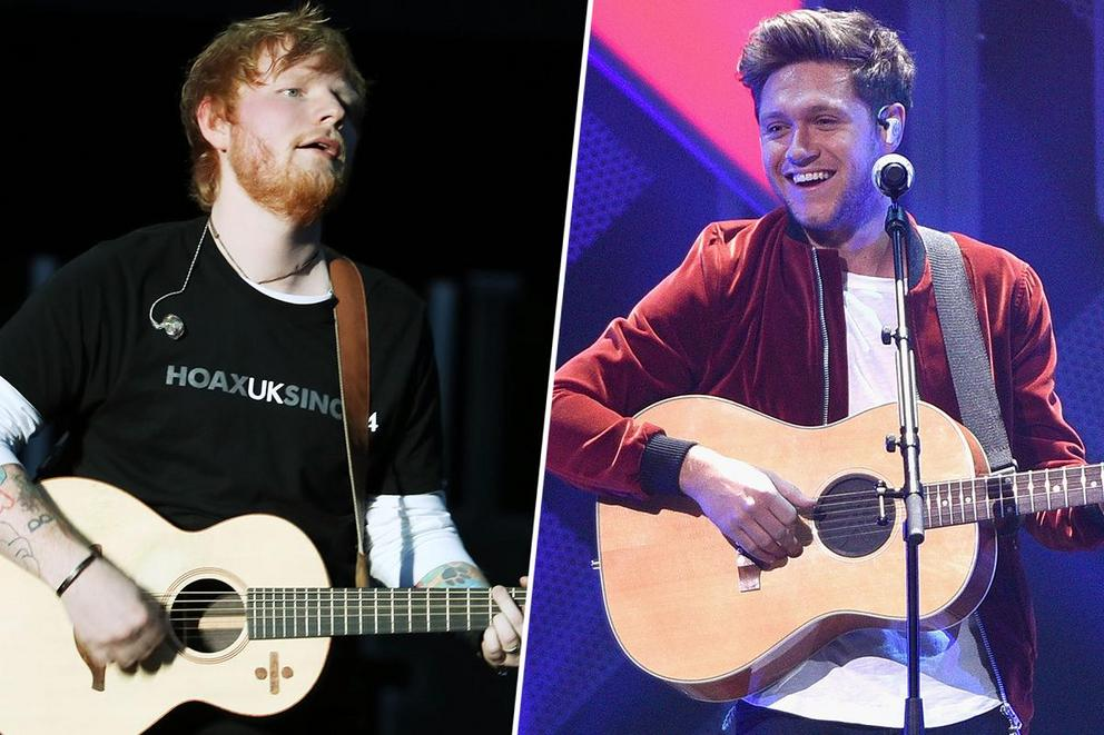 2019 Ultimate Fan Army: Sheerios or Niallers?