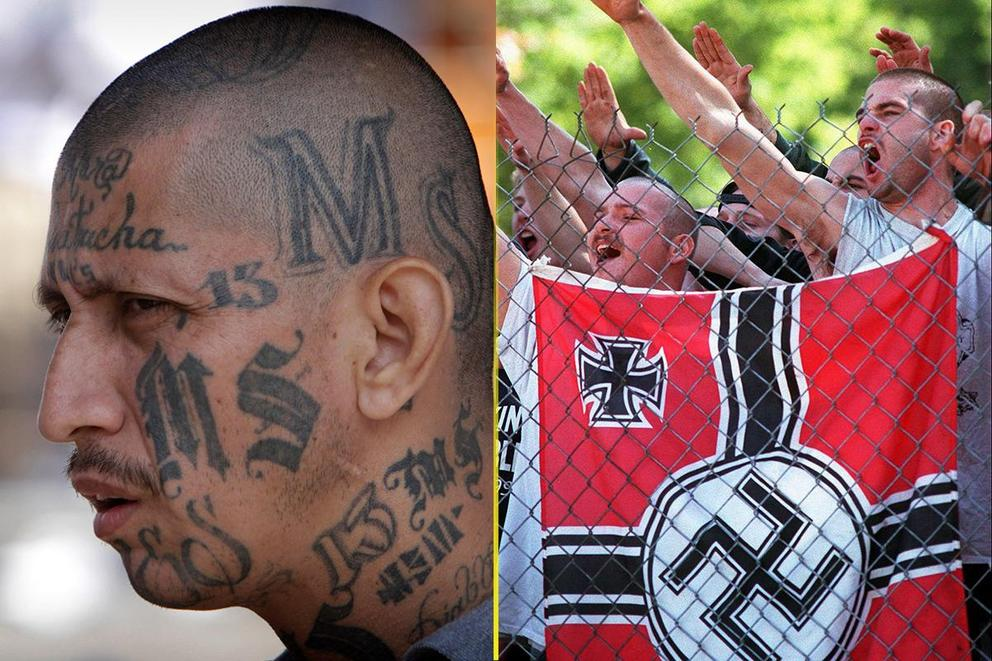 Who is the bigger threat to America: MS-13 or white supremacists?