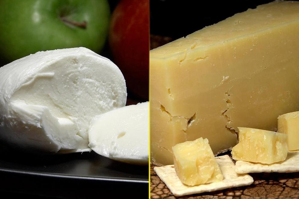 Which cheese is the best: Mozzarella or cheddar?