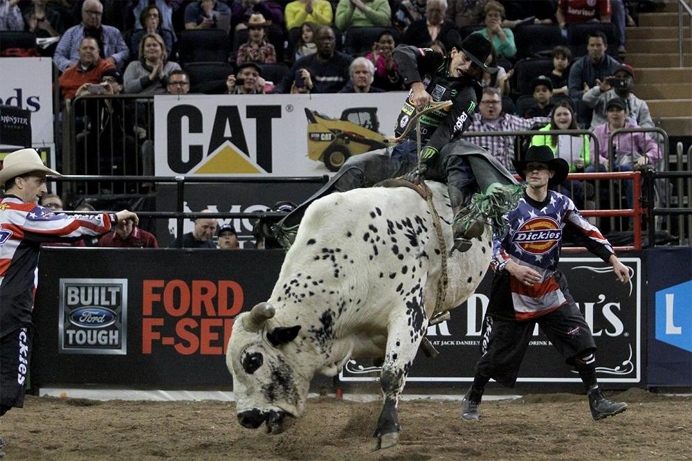 Should rodeos be banned?