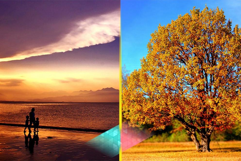 Is fall or summer the better season?