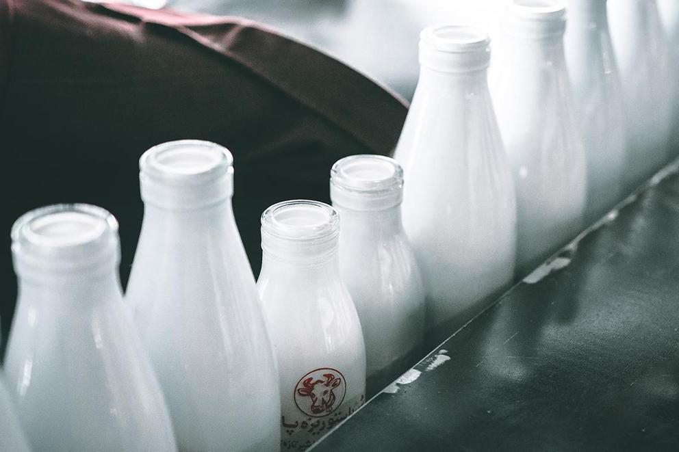 Is milk actually good for you?