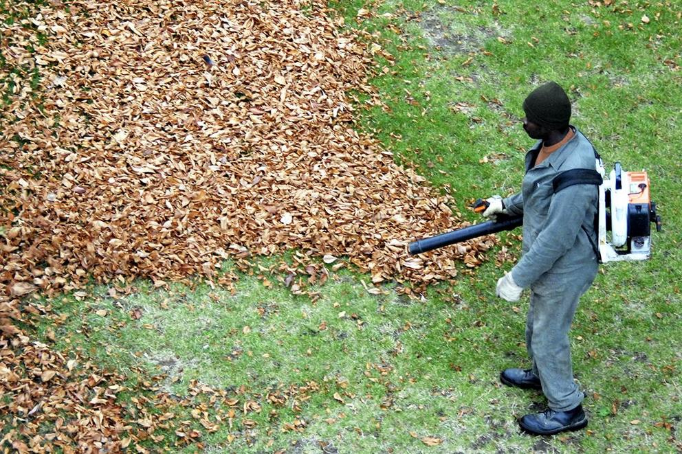 Should leaf blowers be banned?