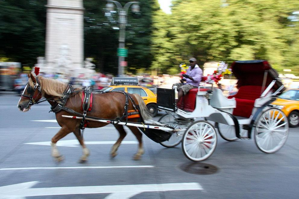 Should horse carriages be banned from cities?