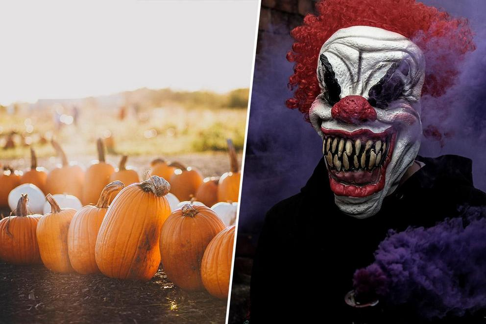 Ultimate fall activity: picking out a pumpkin or going to a haunted house?