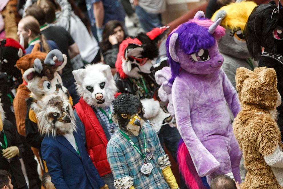 Which fandom is more misunderstood: Furries or bronies?