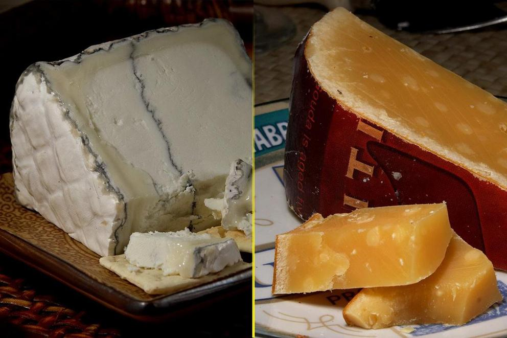 Which cheese is better: Blue cheese or gouda?