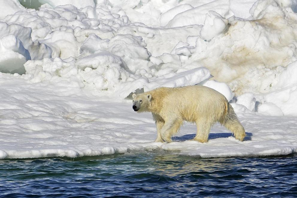 Should climate change be up for debate?
