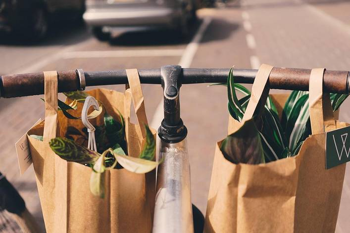 Have you stopped using plastic bags?