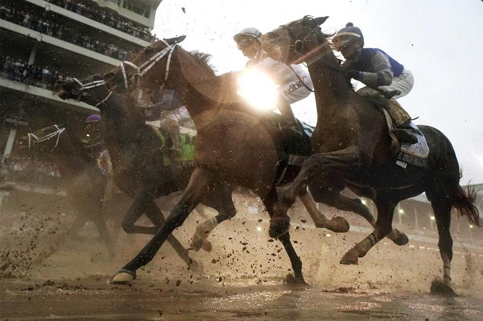 Is horse racing just animal abuse?